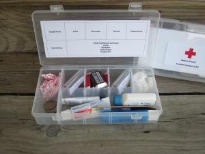 Back to School Teacher Emergency Kit