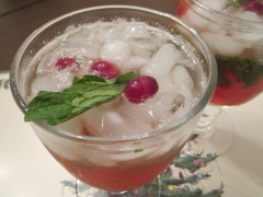 cranberry mojito close up
