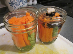 carrot pickle jar samples