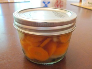 carrot pickles bias cut