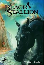 black stallion book