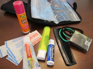 coach survival kit contents