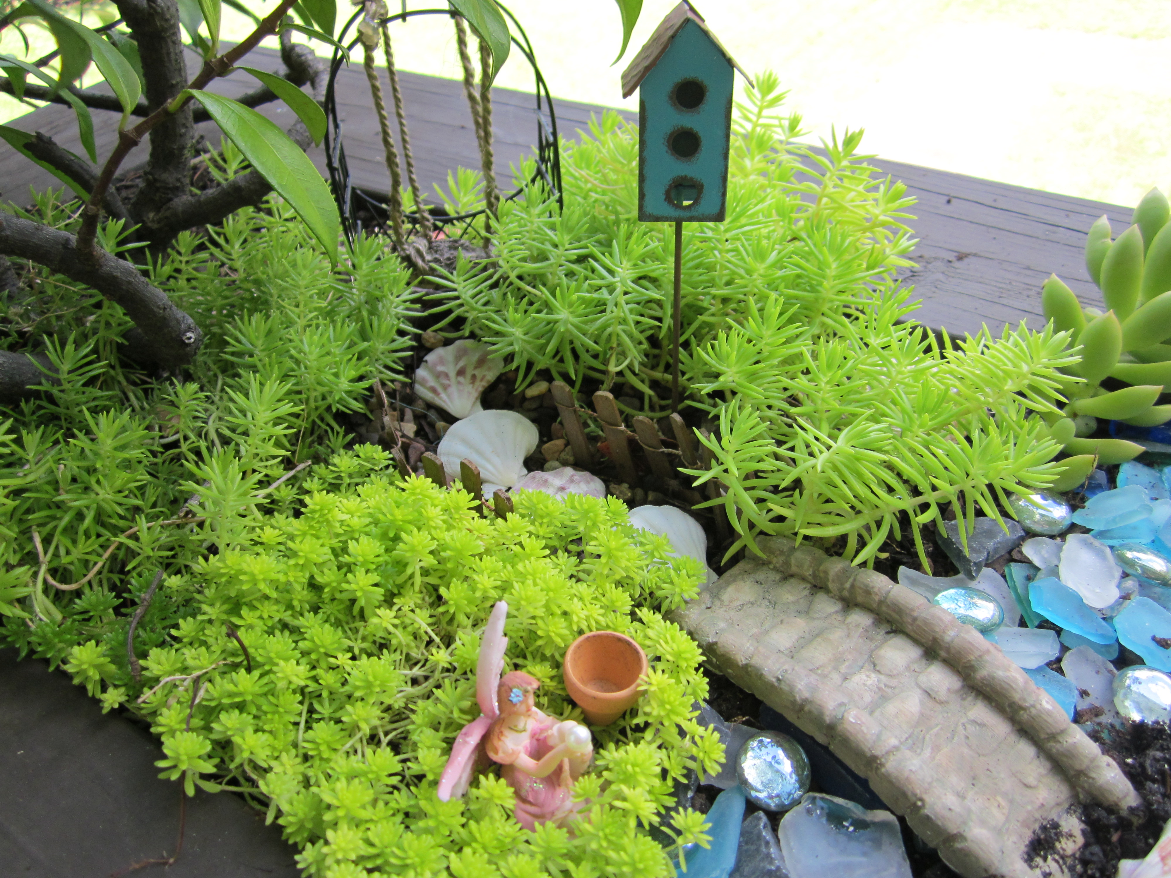 Fairy gardens theroommom for Fairy garden images