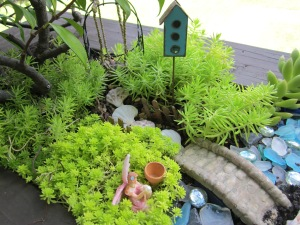 fairy garden finished