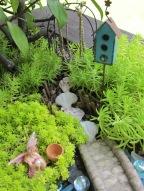 fairy garden phase 3
