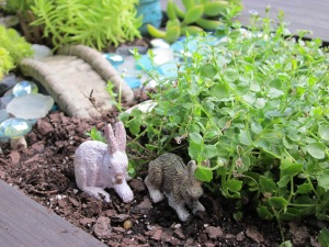 fairy garden rabbits