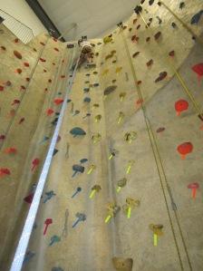 rock climbing birthday party autobelay