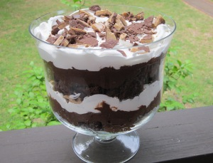 chocolate trifle finished