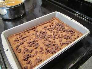 caramel brownies w choc chips