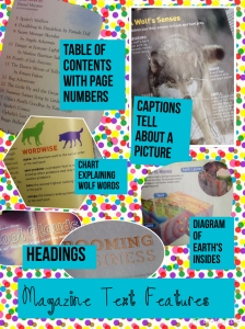 PicCollage magazine text features sample