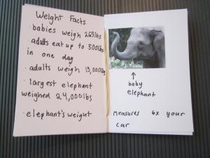 mini book elephant