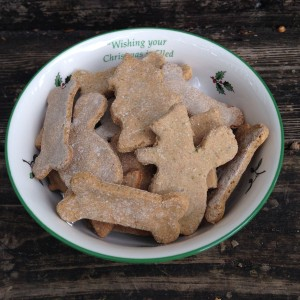 dog-biscuits-in-a-bowl